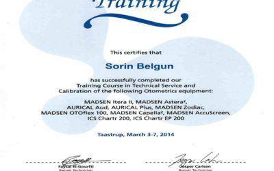 Certificat Sorin Belgun